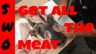 How to fillet a catfish