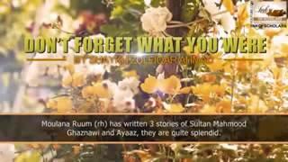 Sultan Mehmood Ghaznavi Aur Uska Wazir Ayaz by Maulana Zulfiqar Ahmad Sahb.( سلطان محمود غزنوی )