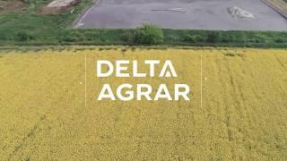 Delta+Agrar+-+Pig+Production