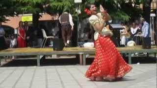 Radia dance - Dhoom tana - munni badnam - diskowale kisko