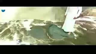 A beautiful hindi song Bahubali2 Rana Daggubati and Kajal Agarwal