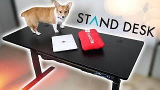 New Office Upgrade! StandDesk Pro Review