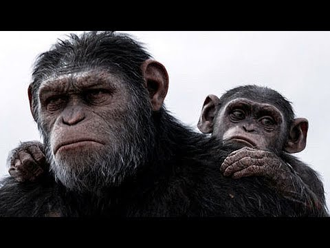 Xxx Mp4 Planet Of The Apes Full Movie 2018 The Apes Returns At Dawn 3gp Sex
