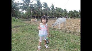 Cambodia Trip January 2016 (2/20) ... my homeland ...