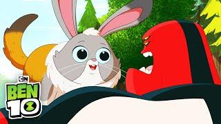 Ben 10 | Ben And Cadobbit | Cartoon Network