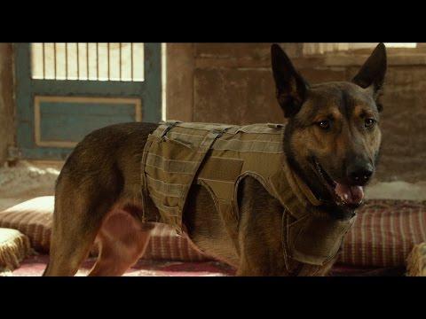 Max Hero Dogs Featurette