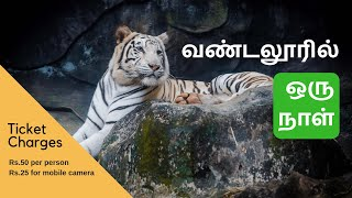 Vandalur Zoo - A tour of Vandalur Zoological Garden in Chennai
