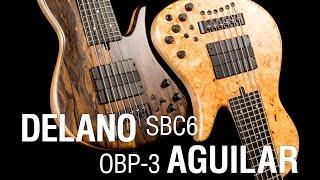 Delano SBC 6 HE/S + Aguilar OBP 3TK