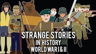 Strange Stories in History - Compilation  Volume 1