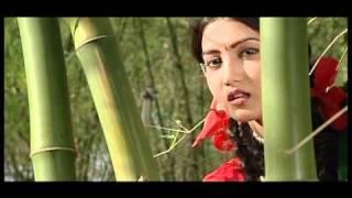 Pahade Sephakhe_ Oriya Love Song_Puchu Ki Gali
