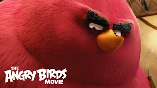 The Angry Birds Movie - Clip: Meet Terence