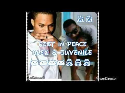 Xxx Mp4 Rhonda 39 S Tribute To Don Man Amp Juvenile 3gp Sex