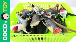 [EN] #42 Marine animals turn into real ones! kids education, Marine animals animationㅣCoCosToy