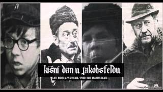 Kisni dan u Jakobsfeldu / Late Night Jazz Session