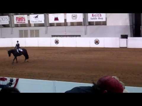 Xxx Mp4 Hot Sizzlin Choice Amateur Equitation Mp4 3gp Sex