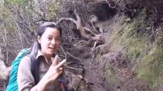Pendakian gunung kerinci 3805 Mdpl 2-3 okt 2015