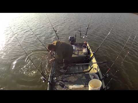 743 pounds of Blue Catfish in 4 hours SOLO James River VA