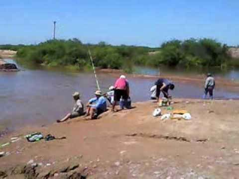 Pesca de Sabalos y Dorados en el Rio Salado Santiago del Estero