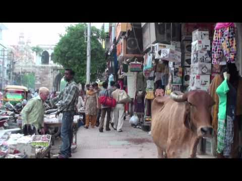 The market of Vadodara (Gujarat - India)