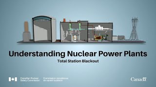 Understanding Nuclear Power Plants: Total Station Blackout