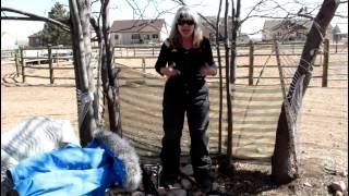 Susan Moore's Blog - Susan Explains How Women Pee Outside