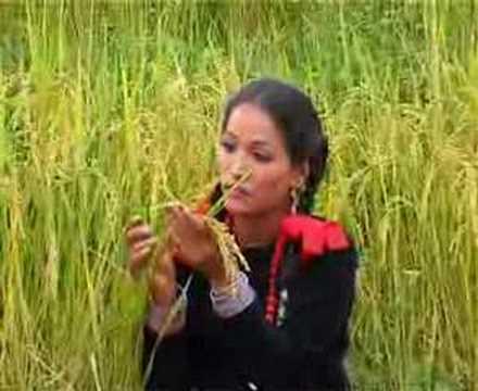 Xxx Mp4 Deuda Songs Dhanka Bala 3gp Sex