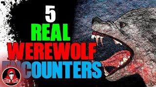 5 REAL Werewolf Encounters