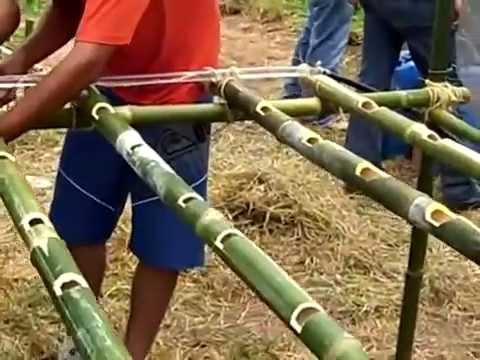 Hidroponia com bambu.wmv