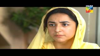 Zara yaad kar Episode 15 full drama 21 june 2016