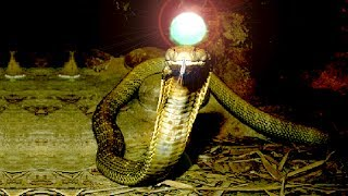 সাপের মাথার মণির আসল রহস্য যা আপনি ভাবতেও পারবেন না  - The real mystery of snake stone