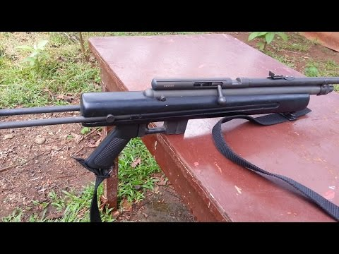 Is Armscor Air Rifle deadly?