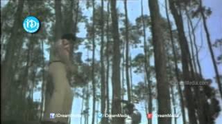 Siripuram Monagadu Movie - Jayaprada, Krishna Nice Action Scene