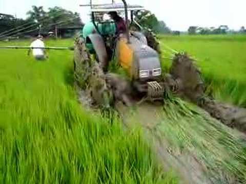desatolando tractor