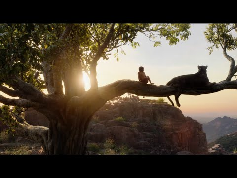 Xxx Mp4 The Making Of The Jungle Book 3gp Sex