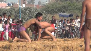 x2 indian style wrestling Junior Cadets at aali village dangal