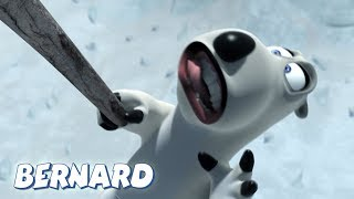 Bernard Bear | The Fossil AND MORE | 30 min Compilation | Cartoons for Children