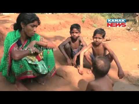 Xxx Mp4 Many Children Affected By Malnutrition In Village In Baliguda 3gp Sex