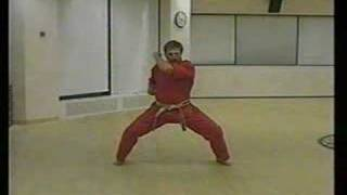 27 Basic Karate Movements