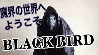 BLCAK BIRD自己紹介ハッハー
