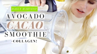 DAILY HARVEST AVOCADO & CACAO SMOOTHIE + COLLAGEN SUPPLEMENT!    Mikaela South