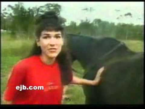 Xxx Mp4 Horse Poops On Lady 39 S Head 3gp Sex