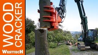 Woodcracker C450 und CS780 im Einsatz bei Baumpflege Gebele