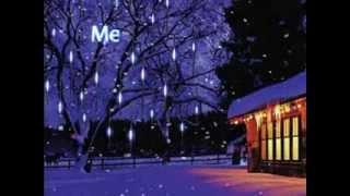 30cm 144-LED Meteor Shower Rain LED Light Tube