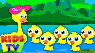 Five Little Ducks | Nursery Rhymes | Kids tv Songs | little duck song | five ducks song