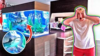 MY NEW BEDROOM SHARK TANK!! **500 GALLONS**