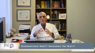 Endometriosis Nedir? Dereceleri Var Mıdır?
