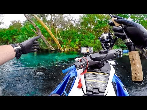 Exploring a Hidden Paradise While Diving and Fishing Unbelievable Jiggin With Jordan