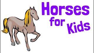 Horses for Kids   Educational Animal Videos