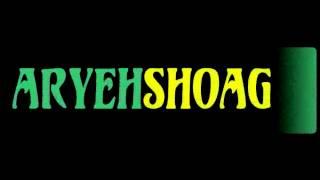 aryeh shoag