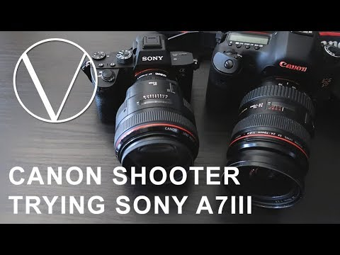 Canon 5d User Trying a Sony A7III for the First Time